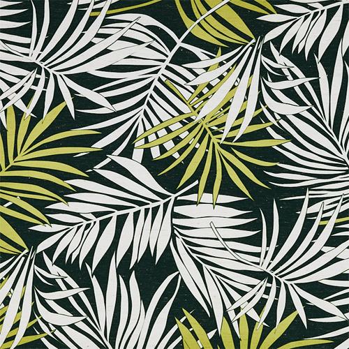 Palm gn